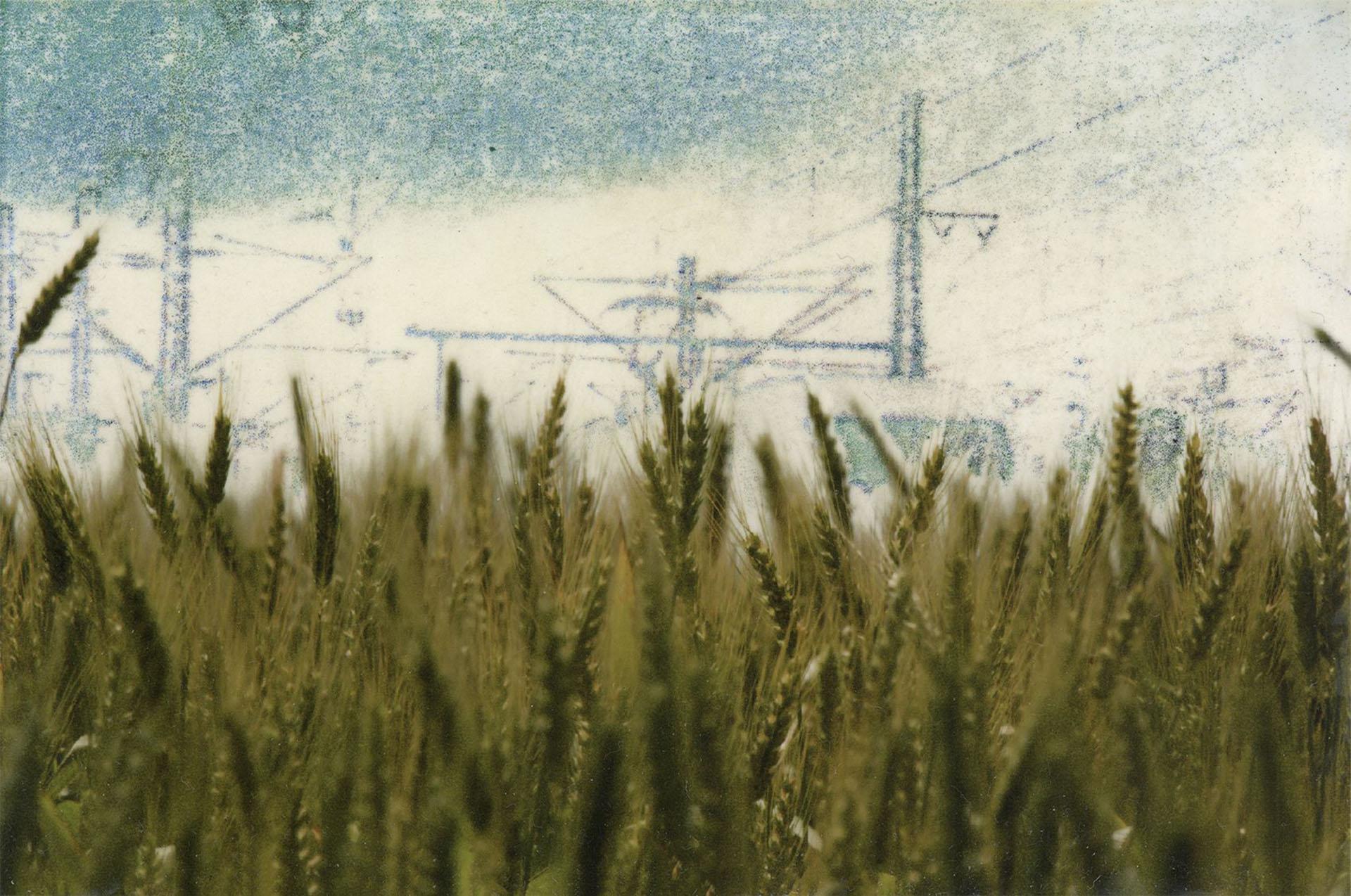 postcards 02